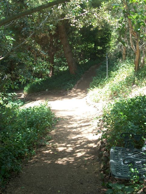 Looking back at entry garden trails