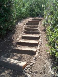 Mitchell Steps 2004