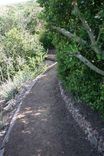 Gillingham Trail 3