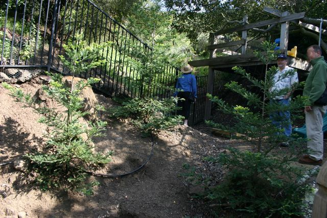 Toward Treehouse