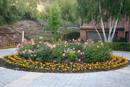 Front Driveway Flower Circle