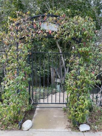 Garden Entry Gate