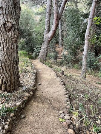 Entry Short Cut Trail 2021