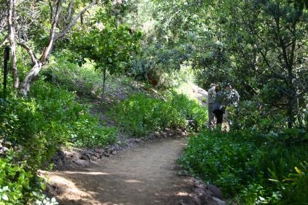 Canyon Visitors