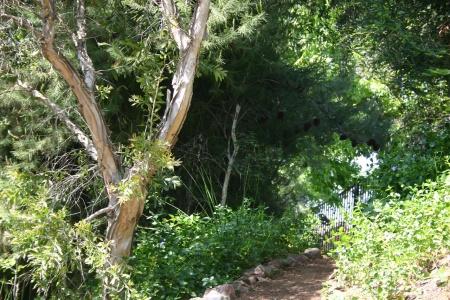 Wheelbarrow Trail 2005