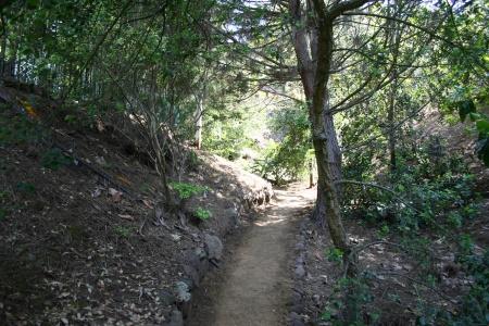 Upper Canyon Trail 2 2005