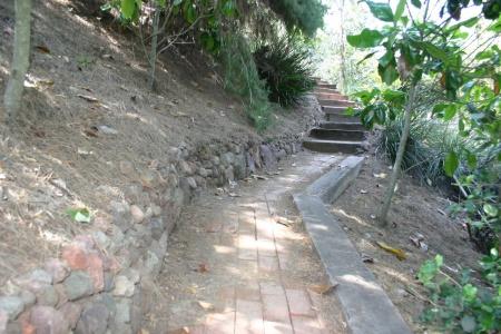Neisner Steps 2