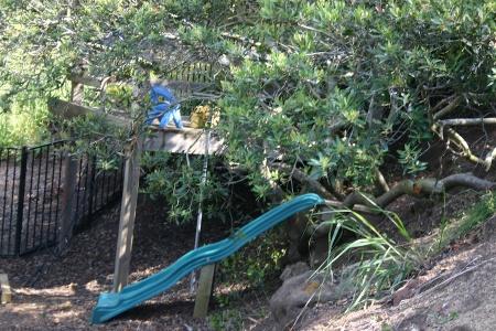 The Kid's Tree House 2 (AKA Cair Paravel)