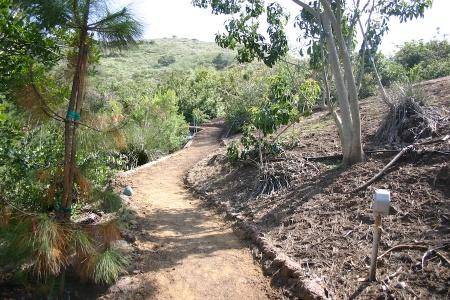 Gillingham Trail 4