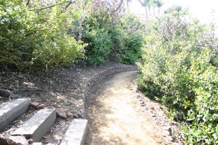 Gillingham Trail 1