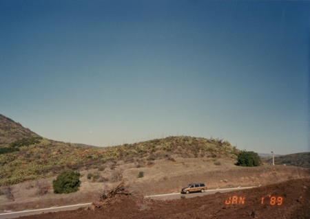 Panorama 1 View 4 1989