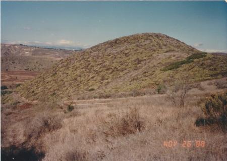 Panorama 1 View 3 1988