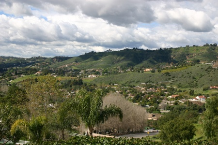 Panorama 1 View 2 2005
