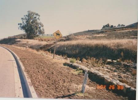 Panorama 2 View 1 1988